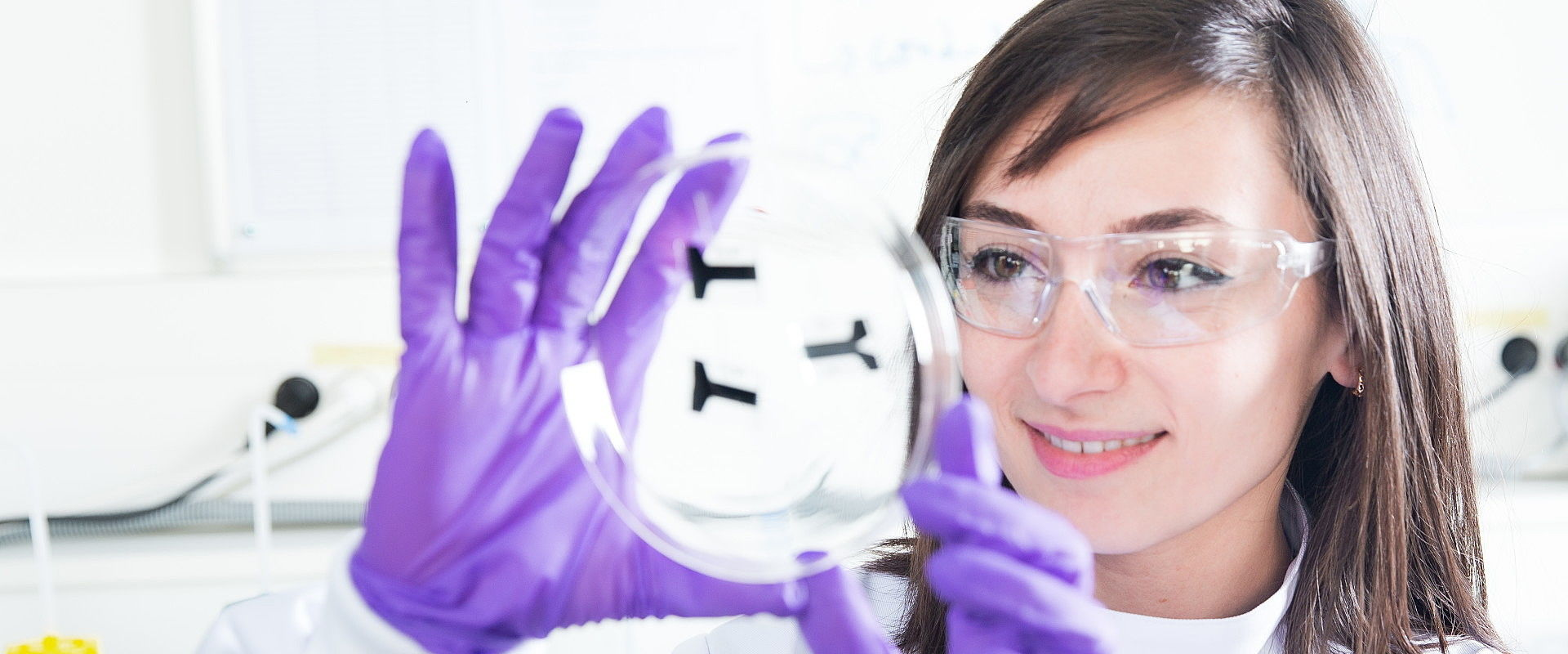 Study Biomedicine or Biomedical Sciences: All you need to know | Study.EU
